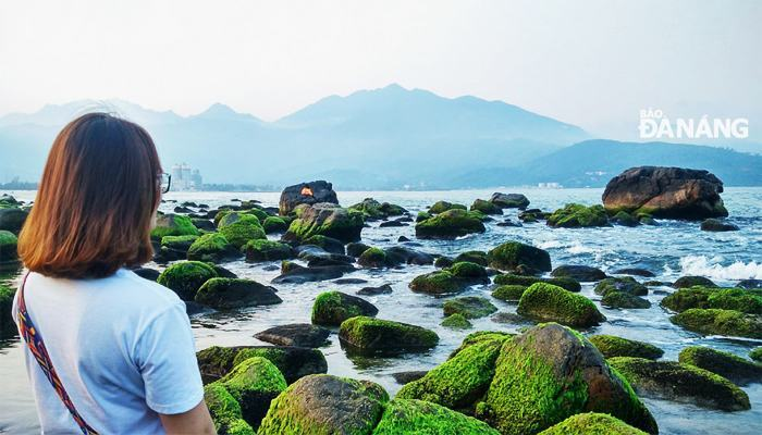 The green moss-covered rocky beach is always beautiful in your checkin pictures.  (Source: baodanang)